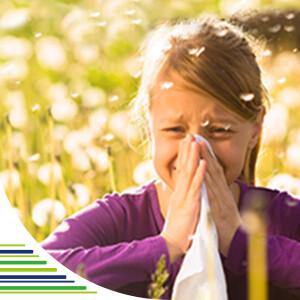 Alergie a jejich léčba
