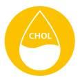 Co je cholesterol a jakou má funkci?