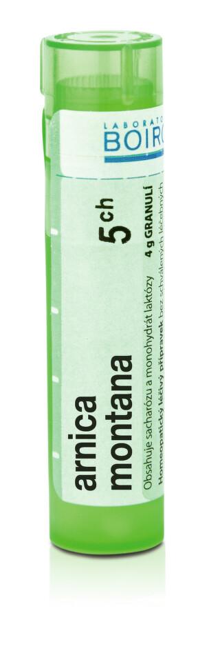 ARNICA MONTANA 5CH granule 4G