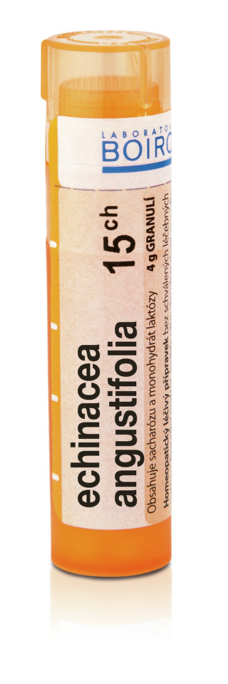 ECHINACEA ANGUSTIFOLIA 15CH granule 1X4G