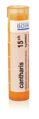 CANTHARIS 15CH granule 1X4G