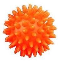 Míč masážní ježek pr.5cm