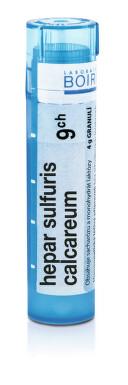 HEPAR SULFURIS CALCAREUM 9CH granule 4G