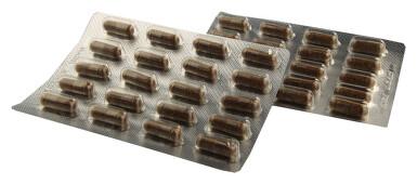 Rakytník řešetlákový 100% prášek z plodů cps.50+10
