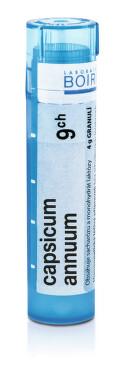 CAPSICUM ANNUUM 9CH granule 1X4G