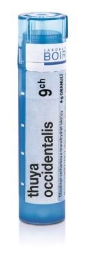 THUYA OCCIDENTALIS 9CH granule 4G