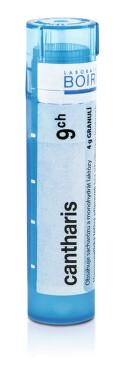 CANTHARIS 9CH granule 1X4G