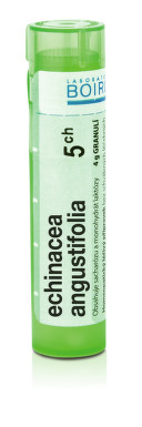 ECHINACEA ANGUSTIFOLIA 5CH granule 1X4G