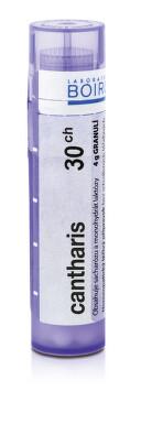 CANTHARIS 30CH granule 1X4G