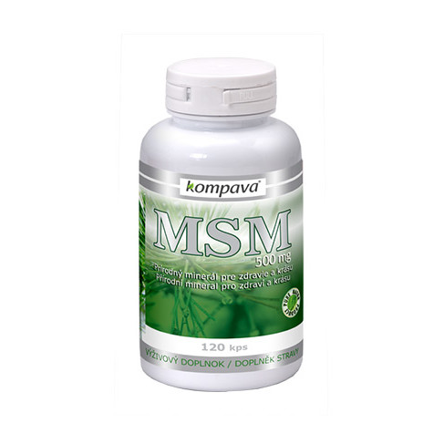 MSM 500mg cps.120