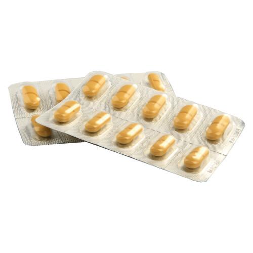 GINGIO 120 perorální potahované tablety 120X120MG