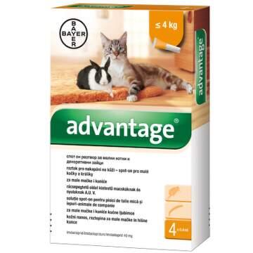 Advantage 40mg pro m.kočky+králíky spot-on 4x0.4ml cbd043e073