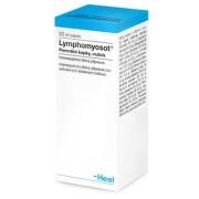 LYMPHOMYOSOT perorální GTT SOL 1X30ML
