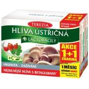 TEREZIA Hlíva+lactobacily cps.60+60