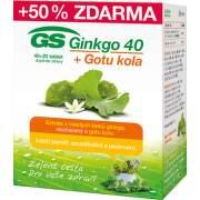 GS Ginkgo 40+Gotu kola tbl.40+20