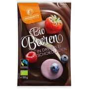Landgarten BIO mix lesního ovoce v čokoládě 50g