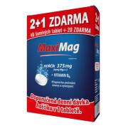 MaxiMag Hořčík+B6 šumivé tbl.2+1 3x20 tbl.