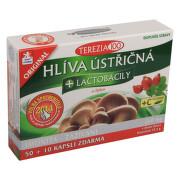 TEREZIA Hlíva ústřičná+lactobacily+vit.C cps.60