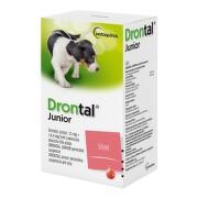 Drontal JUNIOR pro psy a.u.v.sus.50ml+apl.