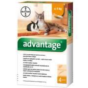 Advantage 40mg pro m.kočky+králíky spot-on 4x0.4ml
