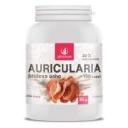 Allnature Auricularia Jidášovo ucho cps.100