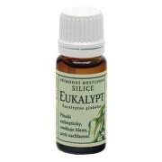 Grešík Silice Eukalypt přírodní rostlinná 10ml