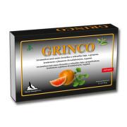 Grinco čajová směs s ginkgem sypaná 100 g