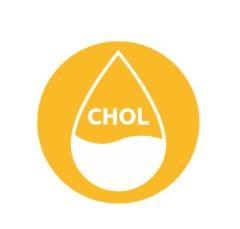 cholesterol ikona