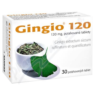 GINGIO 120 120MG potahované tablety 30