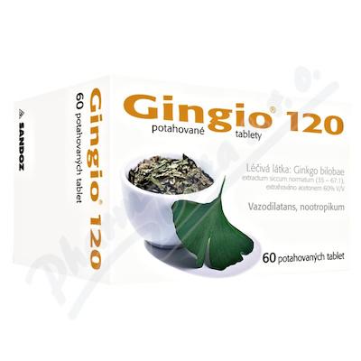 GINGIO 120 120MG potahované tablety 60